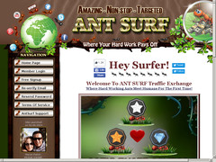 ant surf