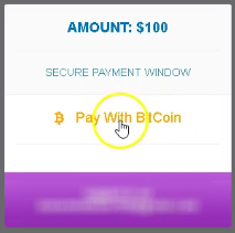 Dépôt 3_pay with bitcoin.PNG